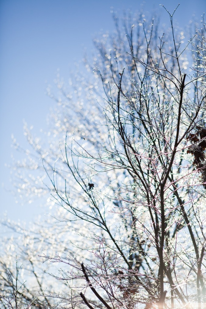 snow&ice-1791