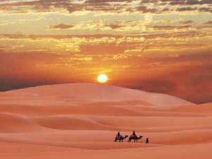 desert_biome_400