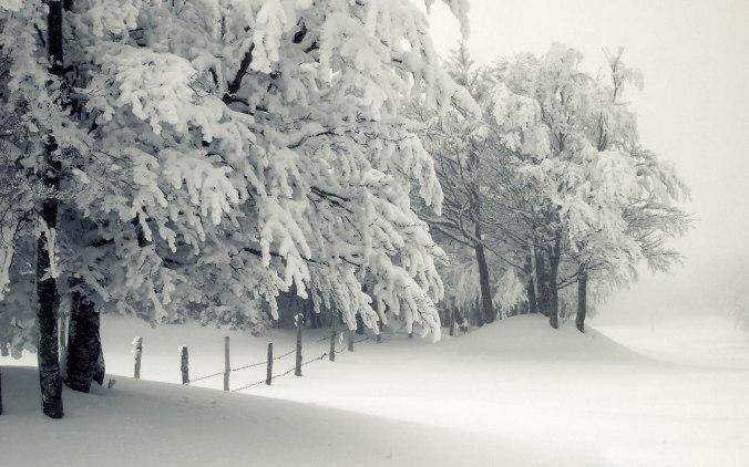Snowy-Landscape1